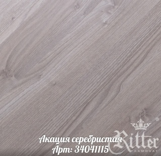 akaciya_serebristaya