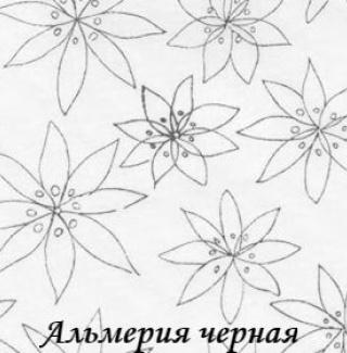 almeriya_cherniy