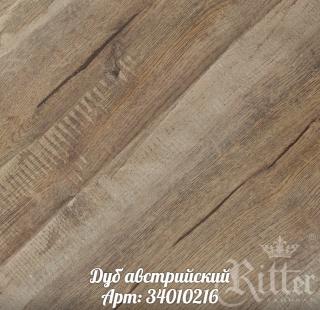 dub_avstriyskiy