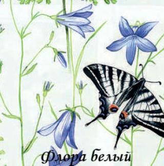 flora_0225_beliy