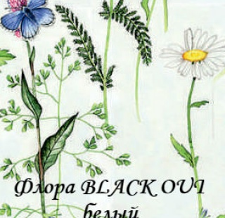 flora_BO_0225_beliy