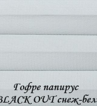 gofre_papirus_BO_0224_snejnobeliy