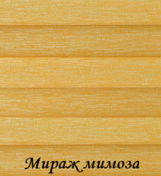 miraj_3204_mimoza