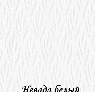 nevada_0225_beliy