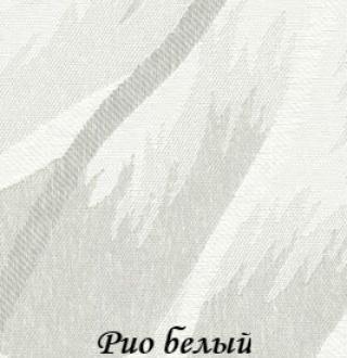 rio_0225_beliy
