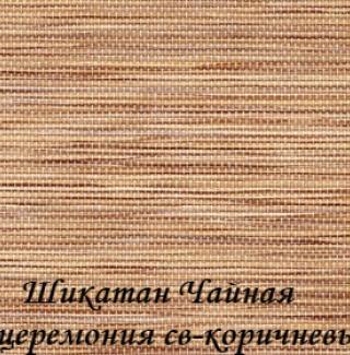 shikatan_CHC_2868_sv-korichneviy