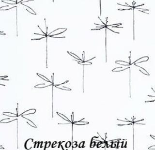 strekoza_0225_beliy